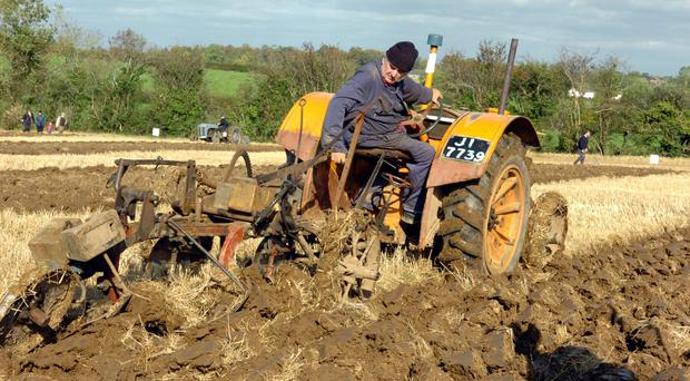 Cecil Wray from Killyleagh, Co Armagh on his 1938 Fordson Tractor and his drag plough competiting in the vintage section of the 62nd Northern Ireland International ploughing championships at Donaghcloney yesterday. 14/10/05
