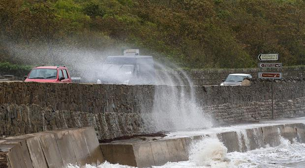 Strong winds on the Ards peninsula this morning as Storm Ali hits the Portaferry Road on the outskirts of Newtownards in Co. Down Pic Alan Lewis