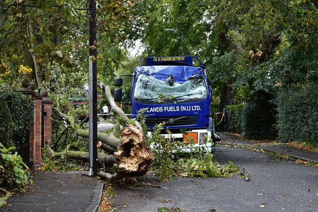 A fallen tree hits a lorry on Osbourne Park near the Lisburn Road in Belfast during the heavy winds on Wednesday. Pic Colm Lenaghan /Pacemaker