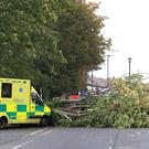 An ambulance which crashed into a fallen tree in Newcastle (Owen Humphreys/PA)