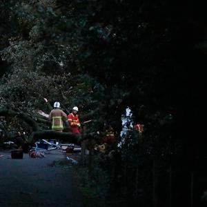Emergency services and a forensic officer at Slieve Gullion forest park in Co Armagh, where a contractor working for Northern Ireland Water died after he was hit by a falling tree as Storm Ali wreaked havoc across Ireland. Brian Lawless/PA Wire