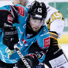 Pressure on: Belfast Giants' Darcy Murphy clashes with Nottingham Panthers' Michael Garnett