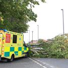 An ambulance which crashed into a fallen tree in Newcastle as the Met Office has updated its amber wind warning for Storm Ali, saying there is now a high likelihood of impacts, as well as extending the area it covers.