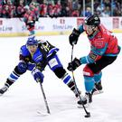 Belfast Giants' Guillaume Gelinas with Fife Flyers' Paul Crowder during Sunday afternoons Challenge Cup game at the SSE Arena, Belfast. Photo by William Cherry/Presseye