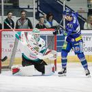 Belfast Giants netminder Tyler Beskorowany makes a save. Pic: Scott Wiggins