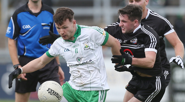 Key man: Donal O'Hare (left) was the hero for Burren on Sunday in the Down county final clash against Kilcoo