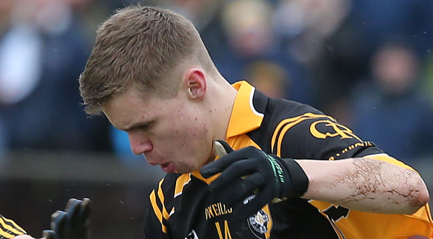 Key role: Oisin O'Neill will be at midfield for Crossmaglen