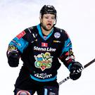 Ice cool: Belfast Giants ace David Rutherford found the net