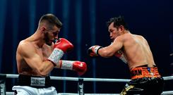 Wounded warrior: Ryan Burnett squares up to Nonito Donaire