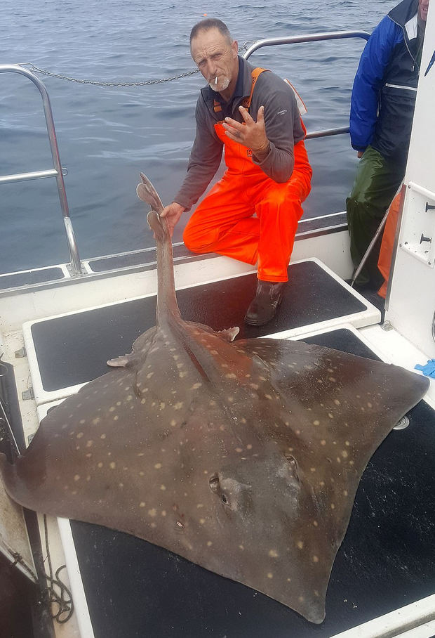 Hamish Currie with his mammoth skate, which he tagged and released