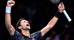 Tall order: Novak Djokovic was on form as he breezed past the giant John Isner