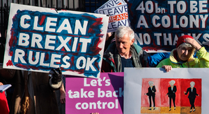Pro-Brexit supporters in Whitehall yesterday