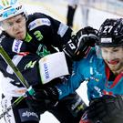 Ice battle: Belfast Giants' Kendall McFaull battles with Ritten Sport's Ivan Tapferer