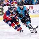 Belfast Giants forward Darcy Murphy