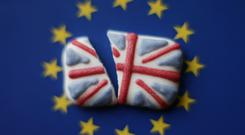 'Leaving the EU, which is essentially a mechanism to liberalise trade and payments, will inevitably initially disrupt some of the flows of trade and payments meaning that, for the economy as a whole, there will be less efficiency.' (Yui Mok/PA)