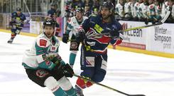 Ice cool: Belfast Giants defenceman Kendall McFaull battles for the puck with Dundee Stars forward Matt