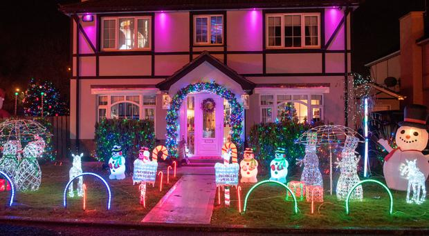Paul Campbell has used thousands of lights to decorate his garden for Christmas