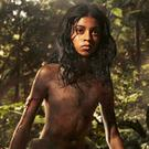 Dark retelling: Rohan Chand as Mowgli