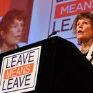 Kate Hoey speaks at a Leave Means Leave