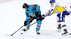 Stick to it: Kevin Raine is loving life back with the Belfast Giants