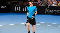 No joy: Andy Murray shows his frustration during defeat in Brisbane