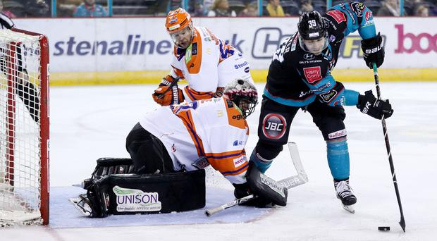 Belfast Giants' Patrick Dwyer scores his hat-trick goal against the Sheffield Steelers