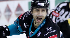 Ice cool: Giants winger Patrick Dwyer celebrates downing the Sheffield Steelers