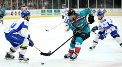 Raring to go: Chris Higgins has come out of retirement to play for the Belfast Giants