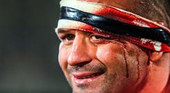 Cut above: Rory Best after winning Saturday's battle