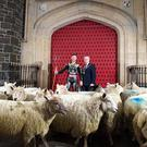 Four-time World Superbike champion Jonathan Rea received the Freedom of the Borough of Antrim and Newtownabbey. He celebrated by joining the Mayor, Councillor Paul Michael, in moving a flock of sheep through the Barbican gate in Antrim town centre.