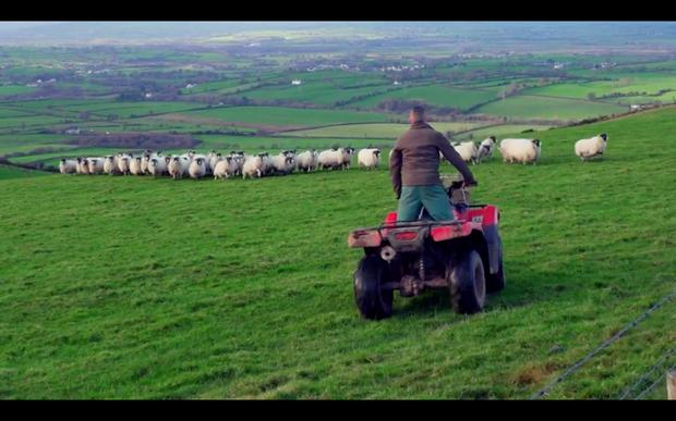 Dating site for farmers in ireland - WHW