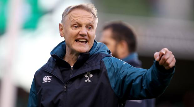 Decision time: Joe Schmidt has a number of options to ponder