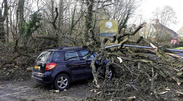 Power out in Donegal homes, trees cleared as Storm Erik blows out