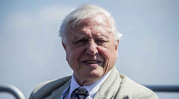 Sir David Attenborough was among the stars named in the survey (Peter Byrne/PA)