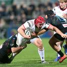 Ulster's Eric O'Sullivan on the charge against Zebre