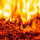 RHI caused huge fallout in 2017 when it emerged the scheme paid out more in subsidies than the cost of fuel