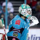 Belfast Giants netminder Tyler Beskorowany (William Cherry/Presseye)