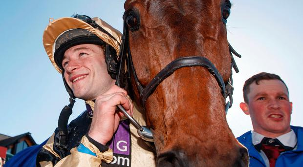 Top quality: Bellshill looks like a Gold Cup winner