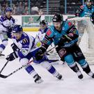 Belfast Giants' Jonathan Ferland with Coventry Blaze's Matt Hackett (William Cherry/Presseye)