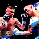 Glove affair: Carl Frampton and Josh Warrington