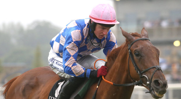 Justice: Declan Lavery has had his ban, imposed at the Cheltenham Festival, quashed
