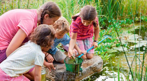 Child's play: there are numerous outdoor activities to keep kids happy
