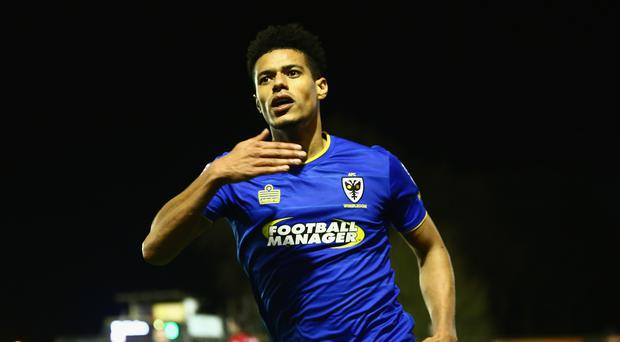 KINGSTON UPON THAMES, ENGLAND - MARCH 14: Lyle Taylor of A.F.C. Wimbledon celebrates after scoring the second goal during the Sky Bet League One match between A.F.C. Wimbledon and Milton Keynes Dons at The Cherry Red Records Stadium on March 14, 2017 in Kingston upon Thames, England. (Photo by Jordan Mansfield/Getty Images)