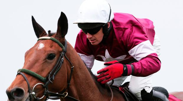 Chances: Ulster horse Road To Riches is going for glory in the Grand National meeting at Aintree today