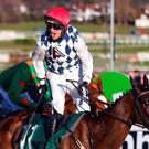 Out in front: Rathvinden is tipped for Aintree success
