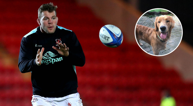 Ulster and Ireland star Jordi Murphy had asked for help in tracking down his lost dog Charlie.