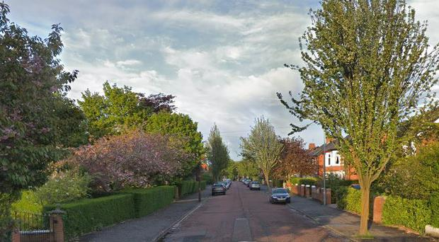 The incident happened on Rosetta Avenue in south Belfast. Credit: Google Maps