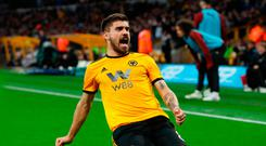 Top drawer: Ruben Neves celebrates after his free-kick opens the scoring