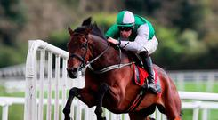 Perfect Ten: Zero Ten, ridden by David Mullins, clears the last on the way to winning Connolly's Red Mills Irish EBF Auction Hurdle Series Final at Punchestown yesterday