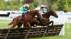 Great start: Calicojack and Eoin Walsh (right) beat Indian Admiral in the opener at Down Royal